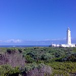 A view over the Nature Reserve, that surrounds the lighthouse, towards the lighthouse and the se