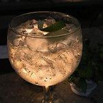 Gin 5