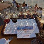 Brochire vins et vins