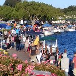 BOAT HARBOUR AND PICNICKERS