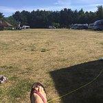Ruime camping met plaatsen onder bomen, op gras. Op loopafstand tot het strand en duinen , waar