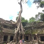 To Prohm - also known as the Tomb Raider Temple.