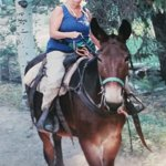 Me on the best mule ever, Wotoba