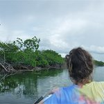 Easy kayaking on smooth water