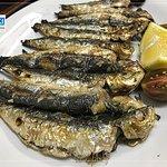Sardines Grilled