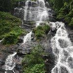 Amicalola Falls State Park-bild
