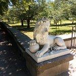 """По пути к мечети нас встречают скульптуры львов. Позади скульптуры """"Турецкий сад"""""""