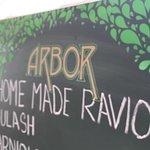 Photo de Arbor