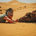 Contact us Morocco desert Sahara