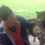 Being able to hold these fantastic owls was amazing
