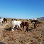 AsinarAvventura Foto