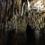 Foto di Grotta Torri di Slivia - Tour
