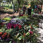 FNGLA Plant Auction at Spring Garden Festival