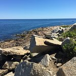 Foto de Halibut Point State Park