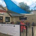 Dog patio area