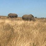 Foto de Tala Private Game Reserve