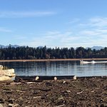 Life on the Fraser River at Iona Beach Park