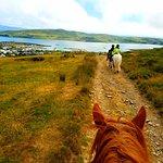 Billede af Dingle Horse Riding