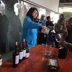As explicações mais completas sobre tipos de uva e os processos de fabricação dos vinhos.