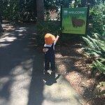 Foto de Woodland Park Zoo