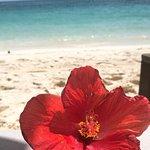 Rosewood Baha Mar – fotografija