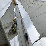 Sails !