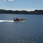 Foto de Hebridean Whale Cruises
