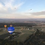 Photo de Balloon Aloft Hunter Valley Day Tours