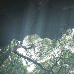 Foto de Valley of Gangala