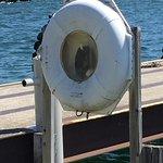 Iconic harbor photo