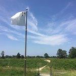 Yorktown Battlefield照片