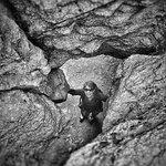 Bild från Angel Rocks Trail