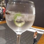 GIN TONIC. Gin con Agua Tónica Premium