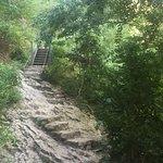 La ruta de las pasarelas ! Muy recomendable !