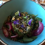 Beautiful and Delicious Quinoa & Avocado Salad