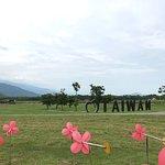 Danongdafu Forest Park照片