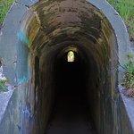 Φωτογραφία: Fort Worden State Park