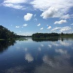 Фотография Blue Heron River Tours