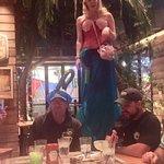 Margaritaville Las Vegas resmi