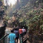 强斯顿峡谷照片