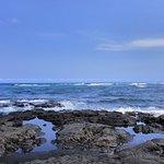 普纳鲁吾海滨公园照片