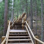 New board walk, the stairs to the cliff top walk