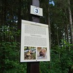 One of the information points along the trail