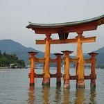 Floating tori of Miyajima island