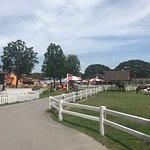 Foto de Swiss Sheep Farm