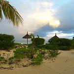 Magnificent Beach at Duna Robin