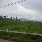 ภาพถ่ายของ Desa Dairy Farm