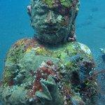 Фотография Amed White Sand Divers