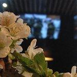Деталь интерьера - цветы сакуры