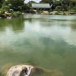 Billede af Kiyosumi Teien